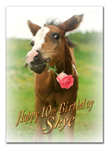 C026; large personnalisé de carte d/'anniversaire; faites sur mesure pour tout nom; cheval poulain