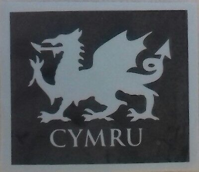 Welsh feathers /& daffodil stencils for etching glass  St Davids Day  Wales