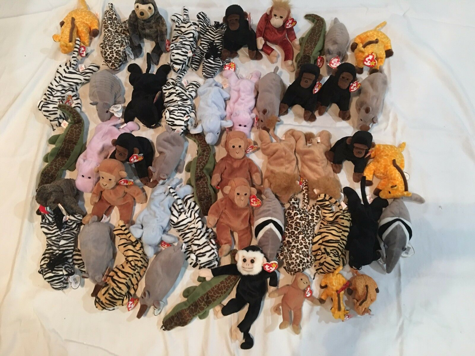 Ty Beanie Babies 49  Assorted  Africa Beanies  w Original Tags - Mint Condition