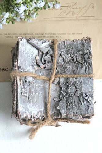 0,50 €//St Bouleau geweißt 10x10cm 10stk Bouleaux plaques Bouleaux écorces plaques