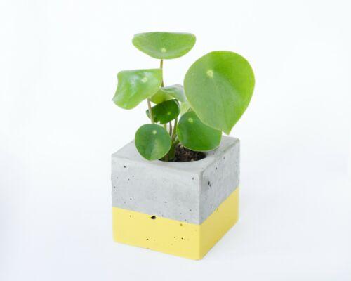 SMALL HANDMADE SCANDI INDUSTRIAL SQUARE CEMENT CONCRETE PLANT POT PLANTER YELLOW