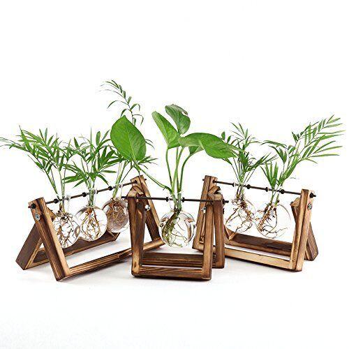 Ivolador Desktop Glass Planter Bulb Vase With Retro Solid Wooden