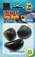 Behr Trendex Karpfenmuschel Carp Shells Hakenköder Karpfen verschiedene Sorten