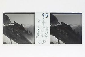 Schynige Piastra Suisse Foto Stereo T2L9n69 Placca Da Lente Vintage