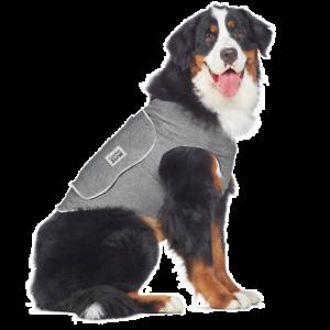 Gilet calmant Compression Dog Zone pour chiens Thunder & Fireworks