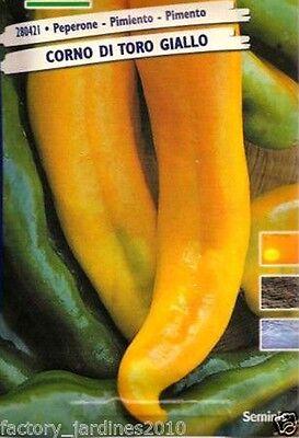 Pimiento AMARILLO Cuerno de Toro. 5 Gr / 600 Semillas - Seeds.