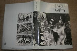 Fachbuch-Foerster-Jagd-Wild-Jaeger-Federwild-Jagdwaffen-Jagdarten-DDR-1969