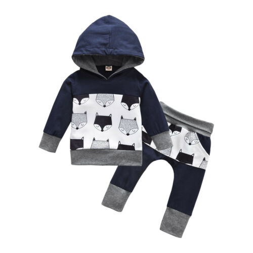 Toddler Kids Baby Boy Clothes Cute Fox Hooded Tops Pants Leggings Winter Outfits