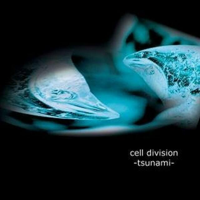 CELL DIVISION Tsunami CD 2009
