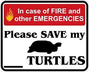 In-Case-of-Fire-Save-My-Turtles-Decals-Stickers