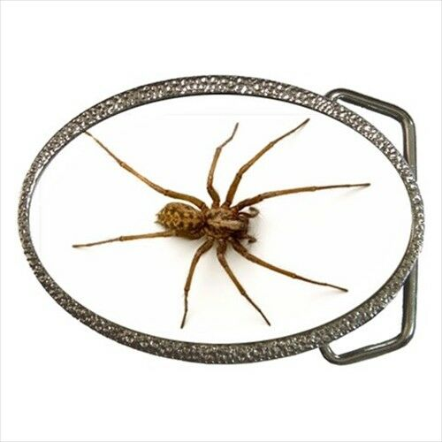 Giant House Spider Chrome Finished Belt Buckle