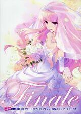 Finale Zero no Tsukaima Complete Illustration Eiji Usatsuka Art Works Book New