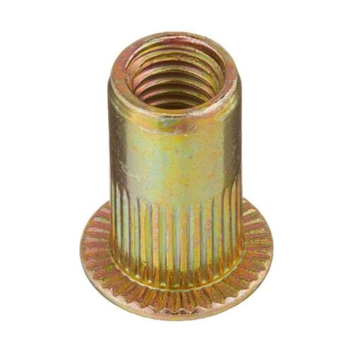 Nutsert Reveting Collocation Cap Hardware Nuts Fastener Rivet Nuts Flat Head