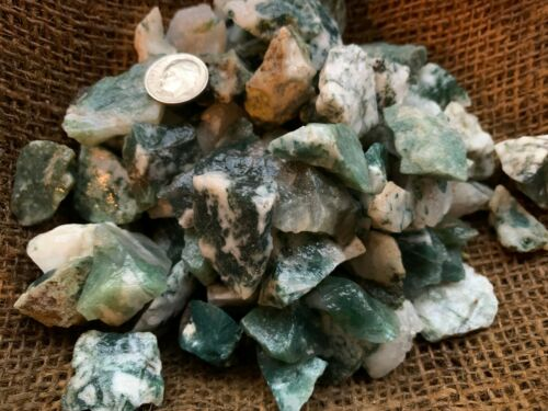 SMALL 1000 Carat Lots of Green Tree Agate Rough Plus a FREE Faceted Gemstone