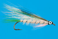 Little Rainbow Trout, 6 Pcs. Size 4