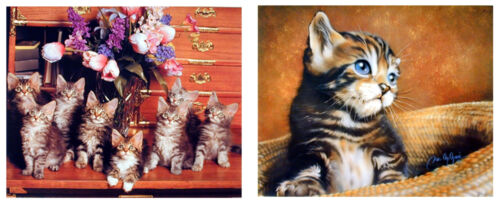 Cute Cat Animal Picture Kids Room Two Set 8x10 Wall Decor Art Print Poster