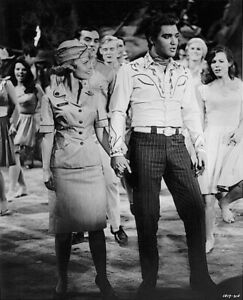 Elvis-Presley-1964-Vintage-Press-Photo-Kissin-Cousins-MGM-Dell-Promo-Date-Stamp
