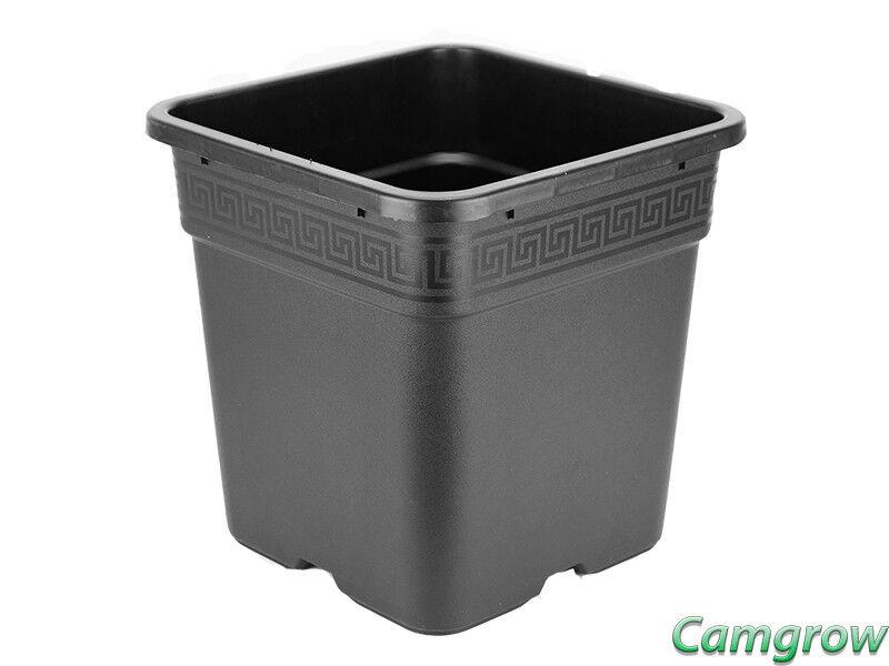 20 X 11L-Premium Cuadrado Ollas para suelo Coco & Hidroponía (Atami Wilma Pot)