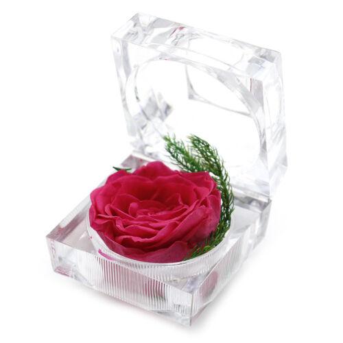 immortal preserved fresh flower rose ring box eternal weddings valentine/'sgiftAQ