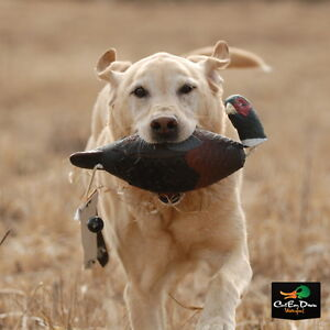 AVERY-GREENHEAD-GEAR-GHG-ATB-PHEASANT-EZ-BIRD-DOG-TRAINING-DUMMY-BUMPER