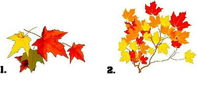 Waterslide Nail Decals Set of 20 - Autumn Fall Leaves - you choose