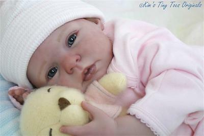 HONEY COMPLETE REBORN DOLL STARTER KIT for Beginners w/DVD ~ ALL in ONE PLACE !