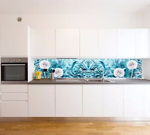 Spritzschutz Sp559 Pusteblume Kuchenruckwand Fliesenspiegel Acrylglas Nach Mass Ebay