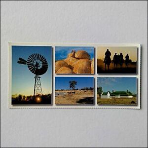 Northern-Territory-Australia-5-Views-Postcard-P404