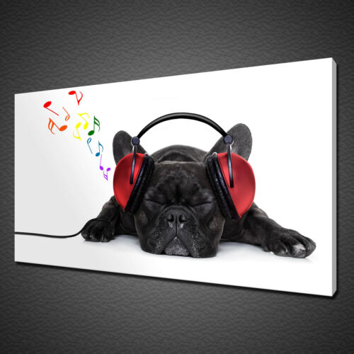 FRENCH BULLDOG HEADPHONE CANVAS PICTURE PRINT WALL ART HOME DECOR