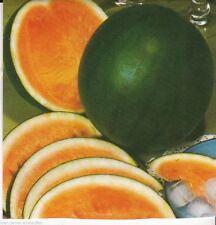 Wassermelone Melone Dunkelgrün Rotfleischig Cucurbita melo ca. 9 Korn Seeds
