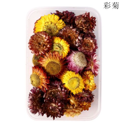 DIY Dried Flowers For Art Craft Epoxy Resin Candle Wedding Gift Decorations