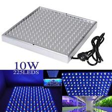 Quad-band 225 LED Grow Light Panel Hydroponic Plant Growing Lamp Blue & White TR