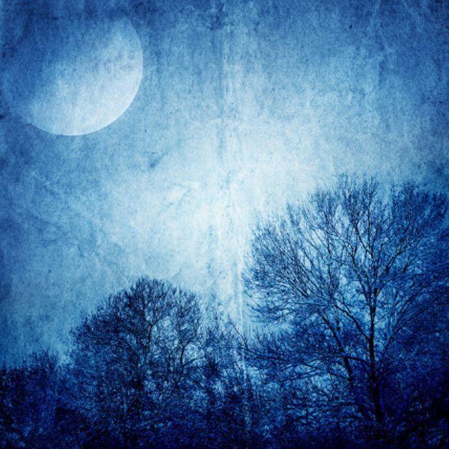 3D Blau Moon Forest Ceiling Wall Paper Wall Print Decal Wall Deco AJ WALLPAPER