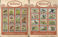CIOCCOLATO _ NESTLE - CHOCOLATS AU LAIT _ FIGURINE _ serie Oiseaux - Champignons