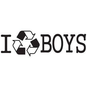 I Recycle Boys Super Hot Sexy Girl Victoria Secret Vinyl