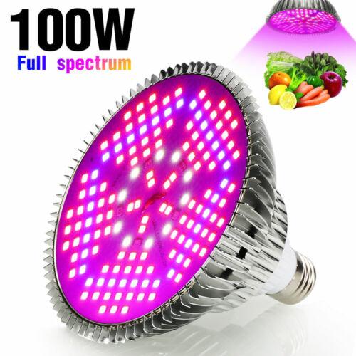 500W Dimmbar COB LED Grow Light Panel Pflanzenlampe Vollspektrum Veg für Pflanze