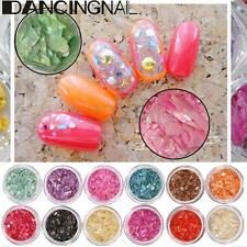 12Pcs  Nail Art Glitter Crushed Shell Chip Powder Dust 3D Tips DIY Decor Tools