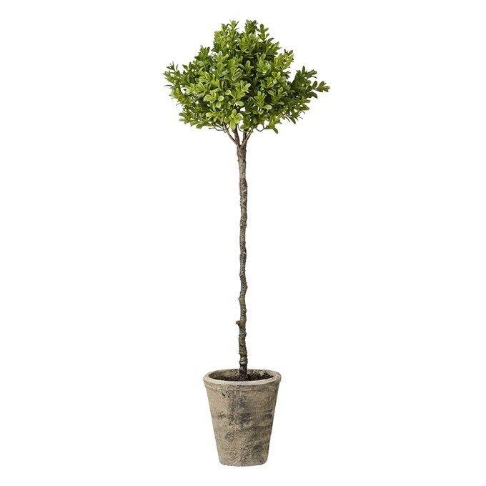 Lene Bjerre Bjerre Bjerre Buchsbaum nostalgie Shabby 66 cm künstlich Pflanze Stamm 8e2629