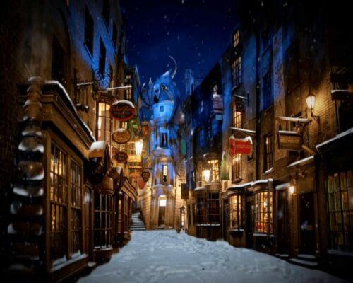 Potter Hogwarts Street Painting Artwork Paint By Numbers Kit DIY