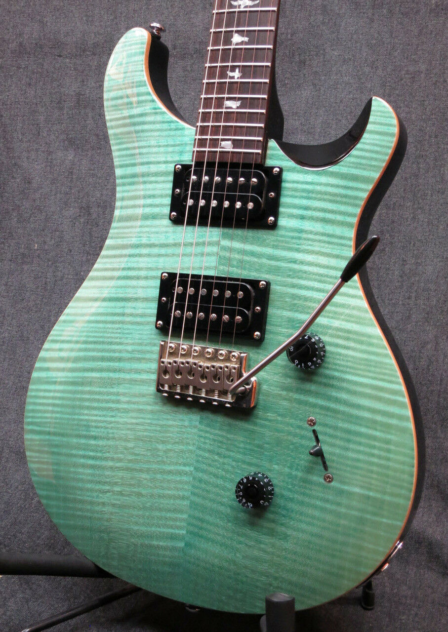 Paul Reed Smith(PRS) SE Custom 24 Electric Guitar with Soft Case