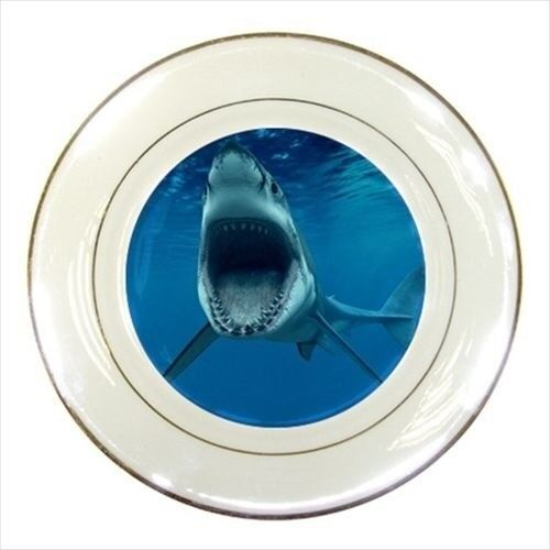 Gray White Shark Porcelain Plate w// Display Stand