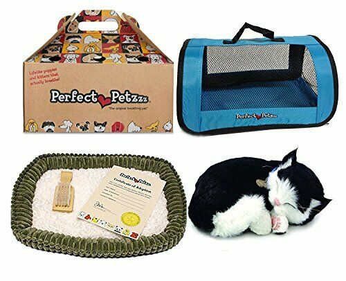 Perfekt Petzzz svart and vit Shorthair Kitten Plush med blå Tote