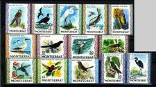 MONTSERRAT, GB, SC231~43A(14) CplSet, 1970 E2R def. 5c~$10 Birds MNH-$55