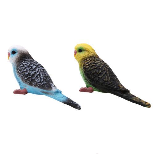 Kawaii Simulation Forest Parrot Figures Animal Model Figurine Fairy Craft Toys
