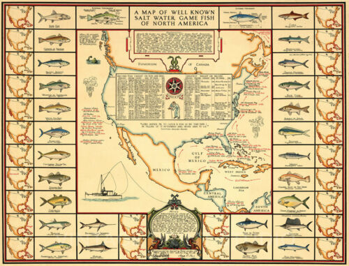 Salt Water Game Fish Vintage Sportsman's Pictorial Map Giclee Canvas Print 26x20