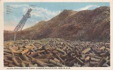 Berlin, NH - Pulp Wood, Burgess Sulphite Co