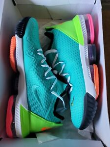 Nike LeBron 16 Low 'Air Max Trainer 2' (CI2668-301) - Size 10.5 ...