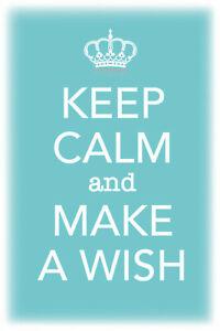Keep-Calm-and-Make-a-Wish-Tin-Sign-Shield-Arched-Tin-Sign-20-x-30-cm-CC0488