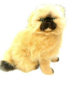 Bocchetta-Himalayan-Cat-Sitting-Plush-Stuffed-Animal-Toy-27CM