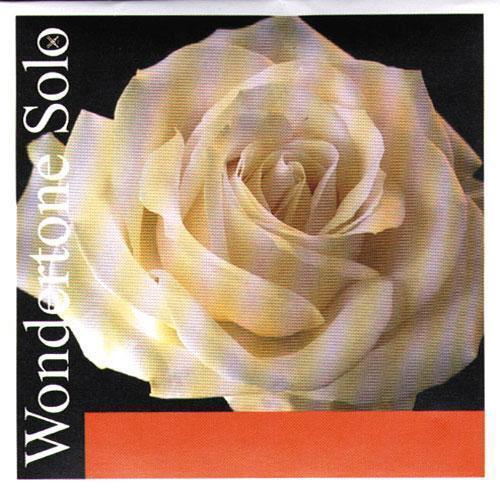 Wondertone Solo Violin String Set 4 4 E Loop End